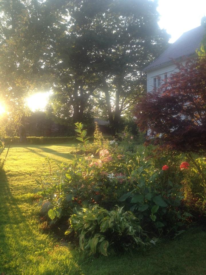 Frå ein særs inkluderande hage. Byhagen vår ser på ingen måte slik ut. Me har ein lang veg å gå!